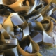 Zeewier voor ons immuunsysteem