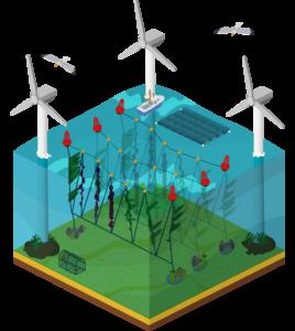 multi-use zeeboerderij